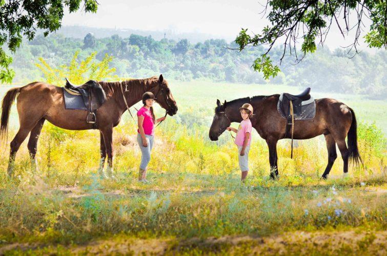 дети гуляют с лошадками