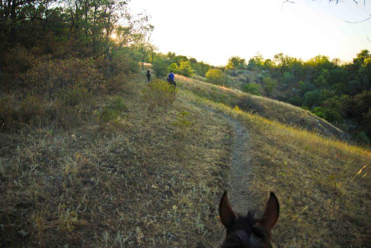 Вид с лошади Вырва
