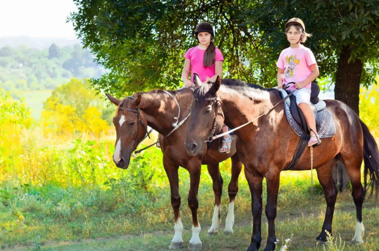 дети верхом лошади
