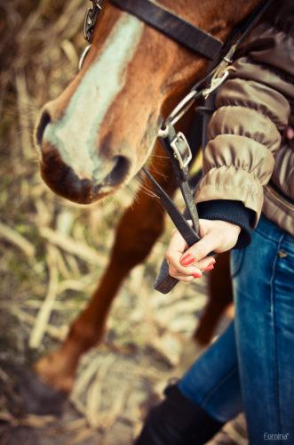 повод лошади